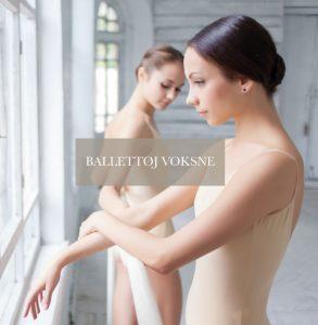 forside foto 1 ballet pige 293x300 - forside-foto-1-ballet-pige