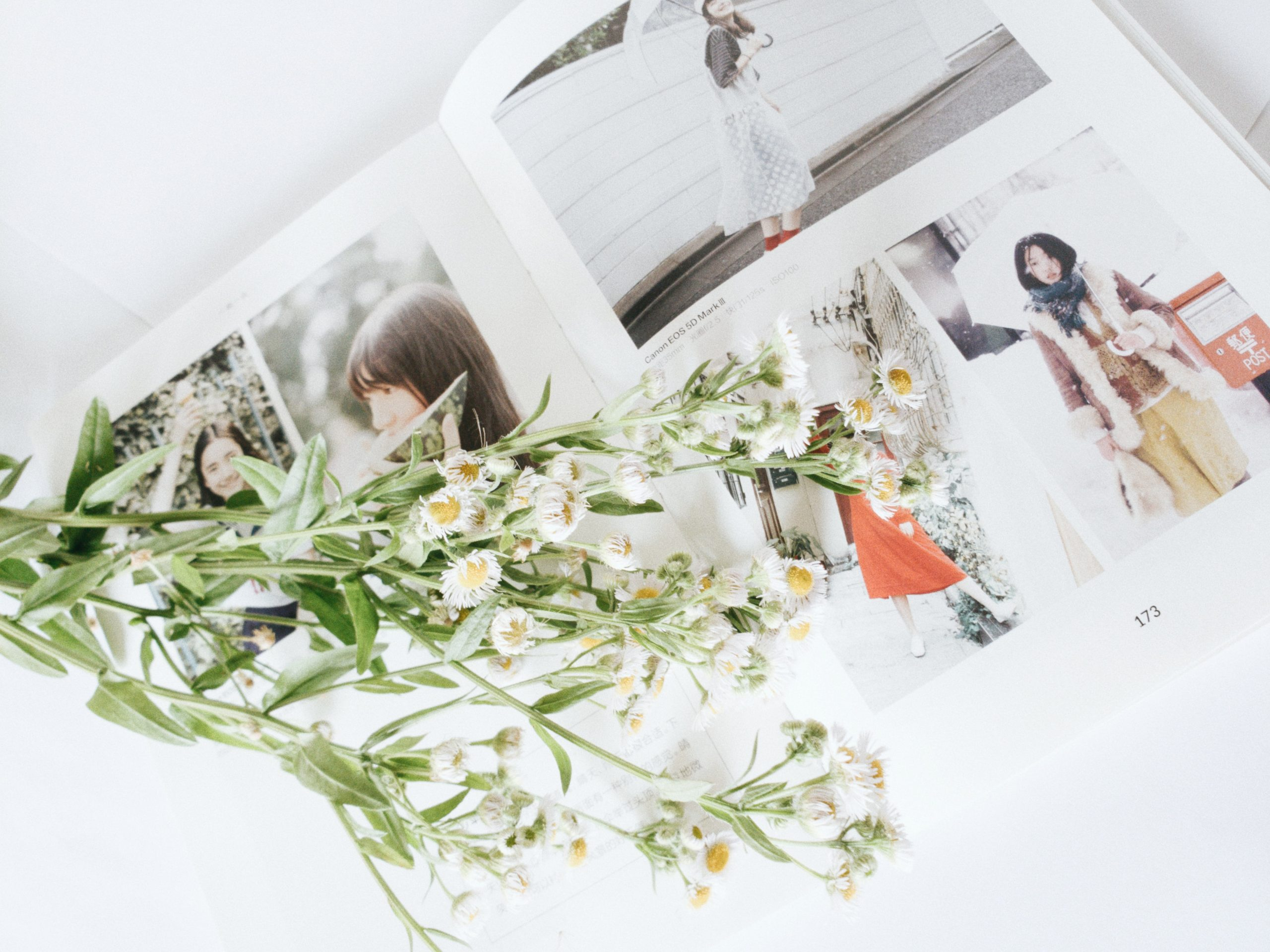 Gem de gode minder i en flot fotobog