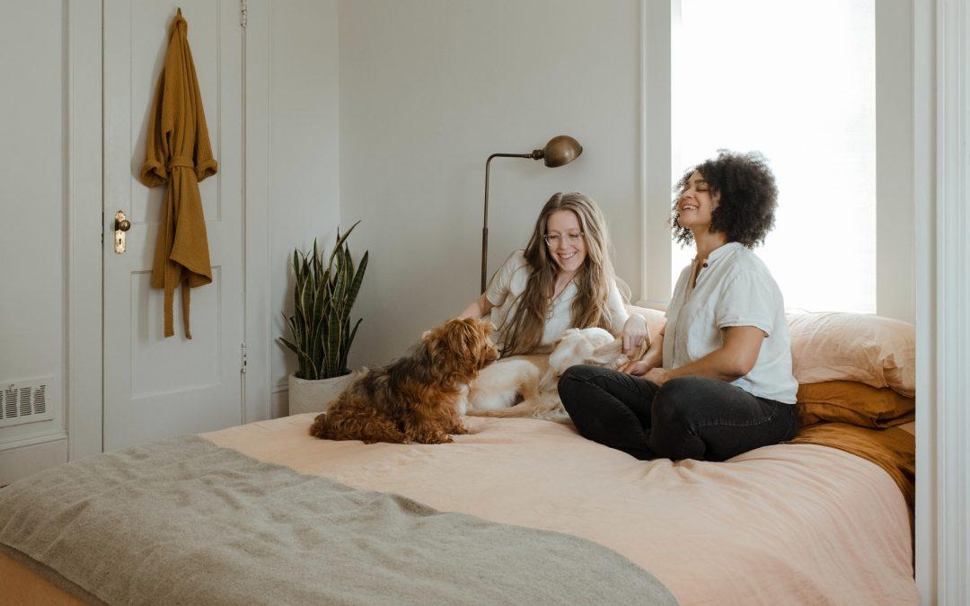 Find senge til hele familien nemt og hurtigt